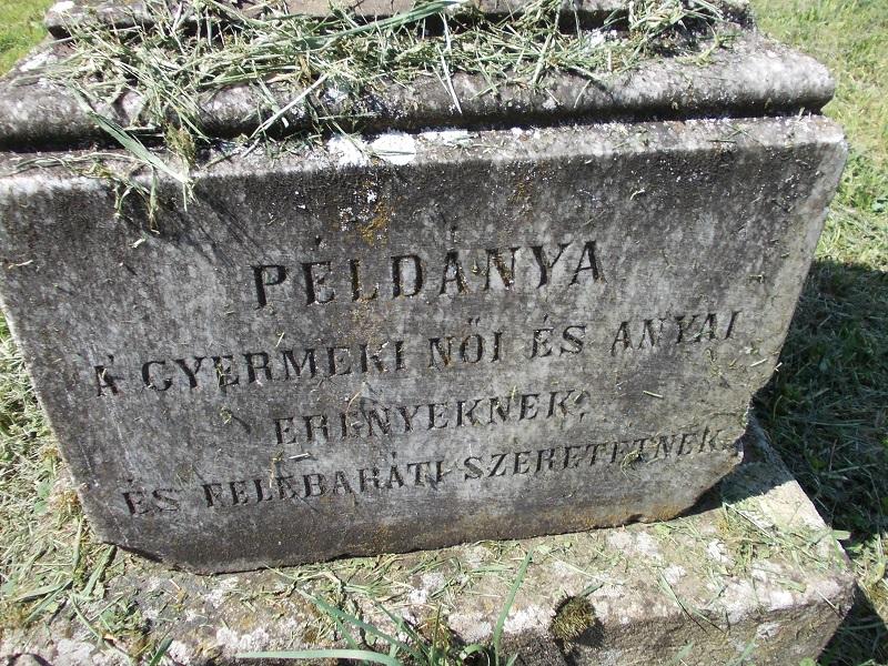 A Zsitvay-sírjel egyik  dedikációja a szerző képén