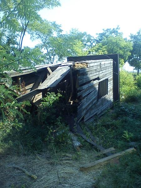 A fa szerkezet állapota veszélyessé vált ezért volt elengedhetetlen a levétele