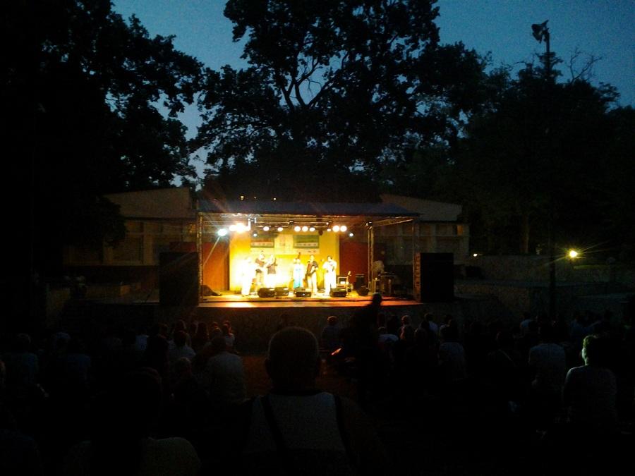 A Buda Folk Band fellépése