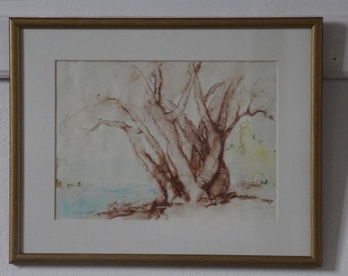 Krétarajz az Ipoly menti fáról
