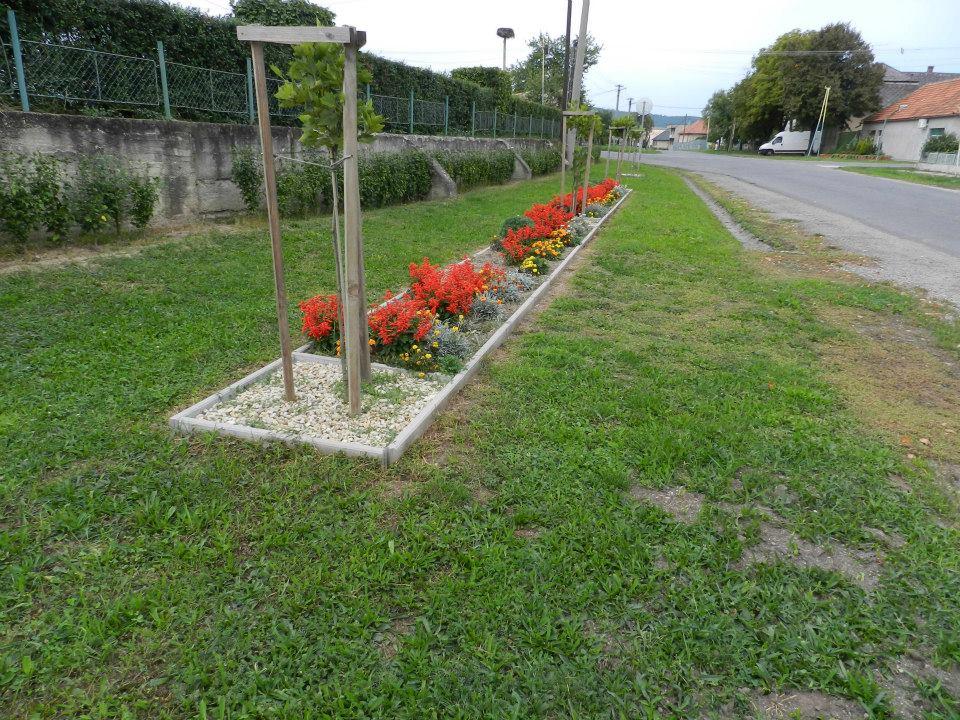 Virágok a parkban