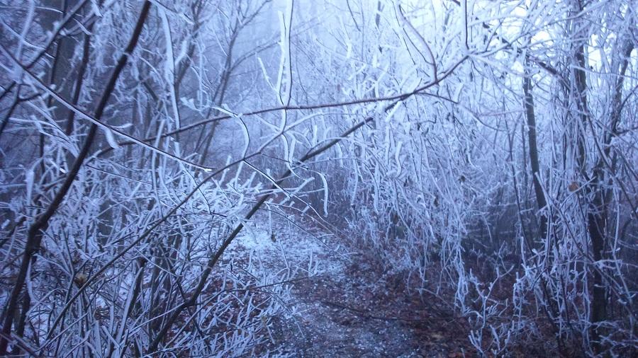 Ilyen szép nem mindennapi jégcsapos faágak állták utunkat