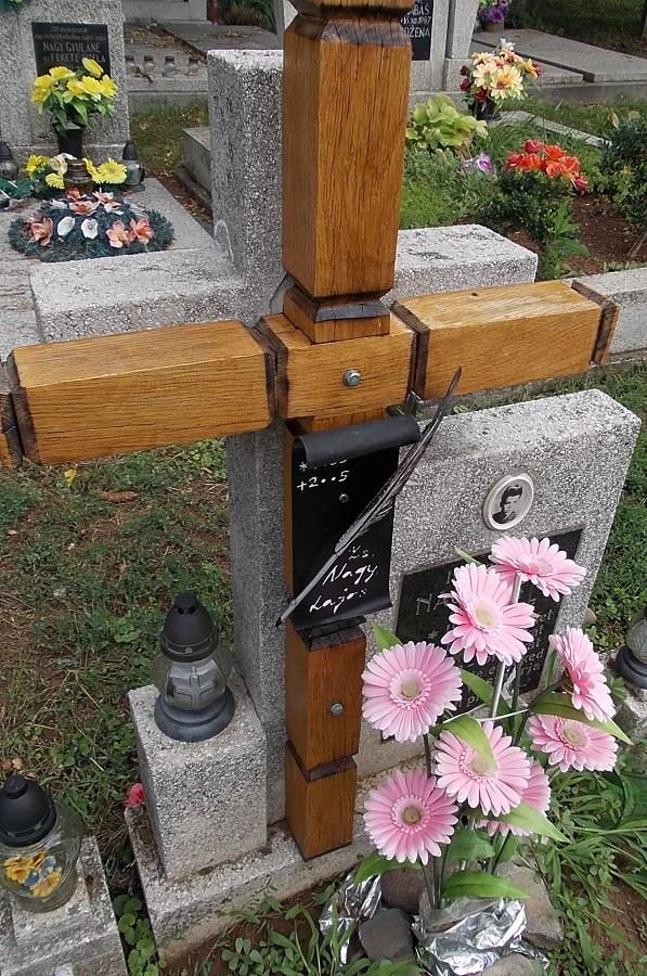 Sírja a zsélyi temetőben Csáky Károly felvételén