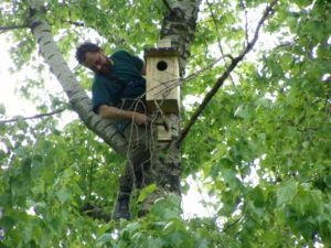 Ornitológusaink a költőodúk kihelyezése közben