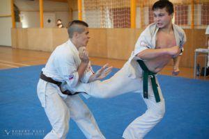 Edzés közben (Fotó: Seishin Karate Club)