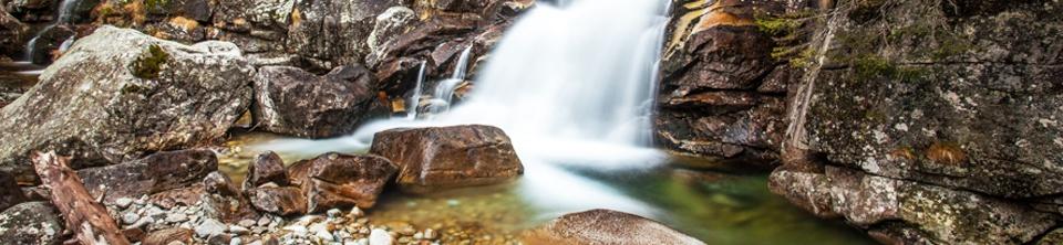 Sok kicsi, természetközeli vízcsapda. (Fotó: ludiavoda.sk)