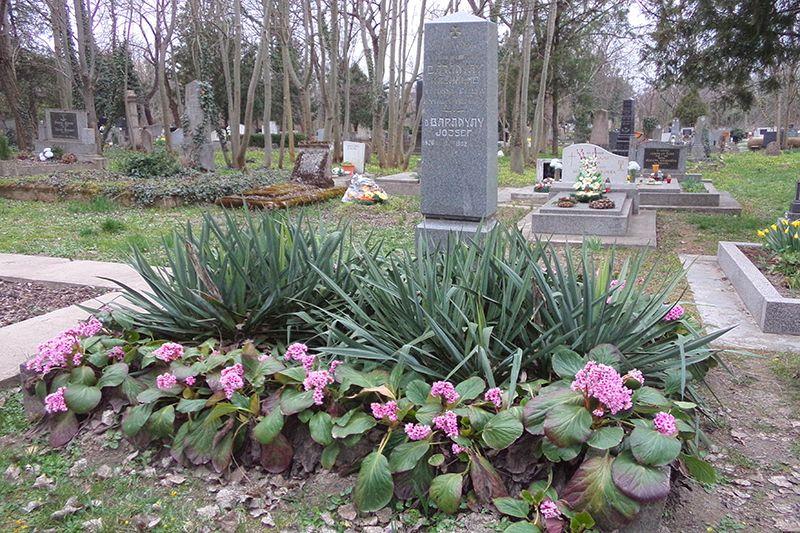 Baranyay József sírja a komáromi temetőben. (Fotó: Németh István/Felvidék.ma)