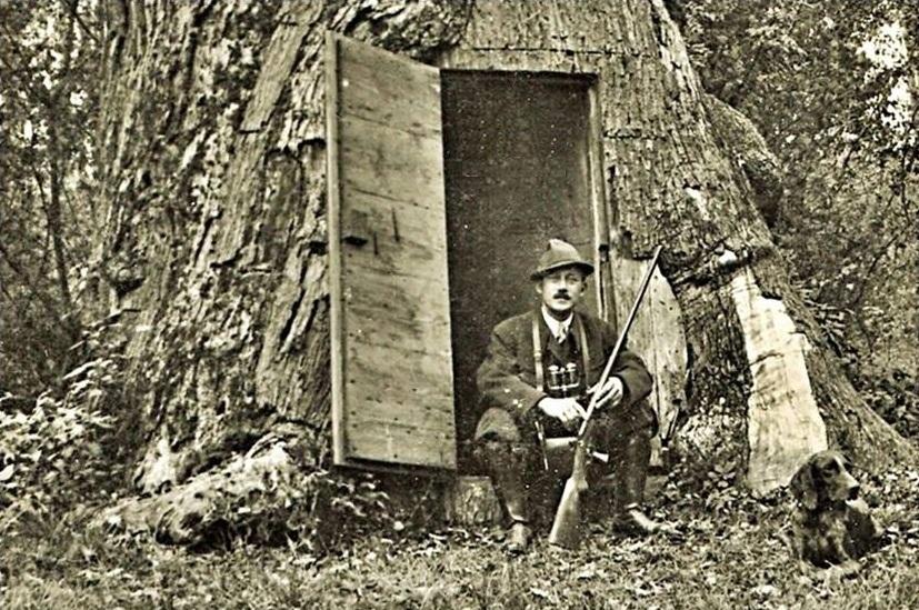 Mészáros Kálmán uradalmi erdész 1931-ben (Kép: Polka Pál gyűjteménye)
