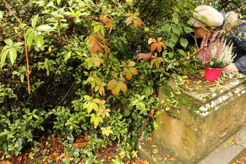 Rázga Pálné benőtt sírköve Pozsonyban (Fotó: Petrás Amália)