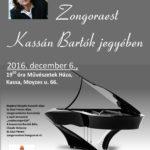 boganyi-piano-madar