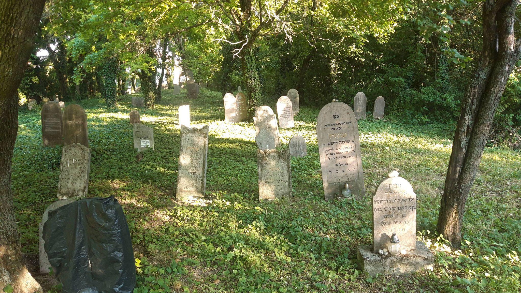 A somorjai és tejfalui zsidóságról a helyi temetőkben | Felvidék.ma